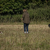 Cotswold Gundog Hunting Skills Training Day 7D-30
