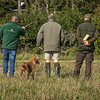 Cotswold Gundog Hunting Skills Training Day 7D-46