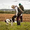 Cotswold Gundog Hunting Skills Training Day 7D-269