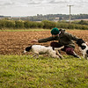 Cotswold Gundog Hunting Skills Training Day 7D-271