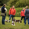 Cotswold Gundog Intro To Shooting Day 7D -1