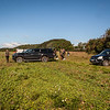 Cotswold Gundogs Shoot Skills Training Day 5d-1