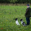 Cotswold Gundogs Shoot Skills Training Day 7d-58