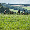 Cotswold Gundogs Shoot Skills Training Day 7d-120