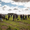 Cotswold Gundogs Shoot Skills Training Day 5d-10