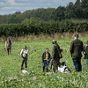 Cotswold Gundogs Shoot Skills Training Day 7d-135