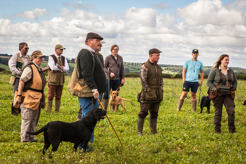 Cotswold Gundogs Shoot Skills Training Day 5d-9