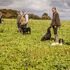 Cotswold Gundogs Shoot Skills Training Day 5d-23