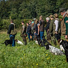Cotswold Gundogs Shoot Skills Training Day 7d-50