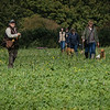 Cotswold Gundogs Shoot Skills Training Day 7d-183