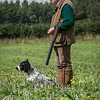 Cotswold Gundogs Shoot Skills Training Day 7d-136