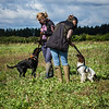 Cotswold Gundogs Shoot Skills Training Day 7d-34