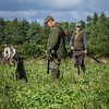Cotswold Gundogs Shoot Skills Training Day 7d-40