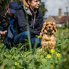 Cotswold Gundogs Shoot Skills Training Day 7d-116