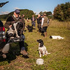 Cotswold Gundogs Shoot Skills Training Day 5d-5