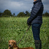 Cotswold Gundogs Shoot Skills Training Day 7d-199