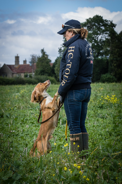 Cotswold Gundogs Shoot Skills Training Day 7d-192