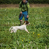 Cotswold Gundogs Shoot Skills Training Day 7d-48