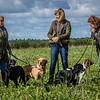 Cotswold Gundogs Shoot Skills Training Day 7d-37