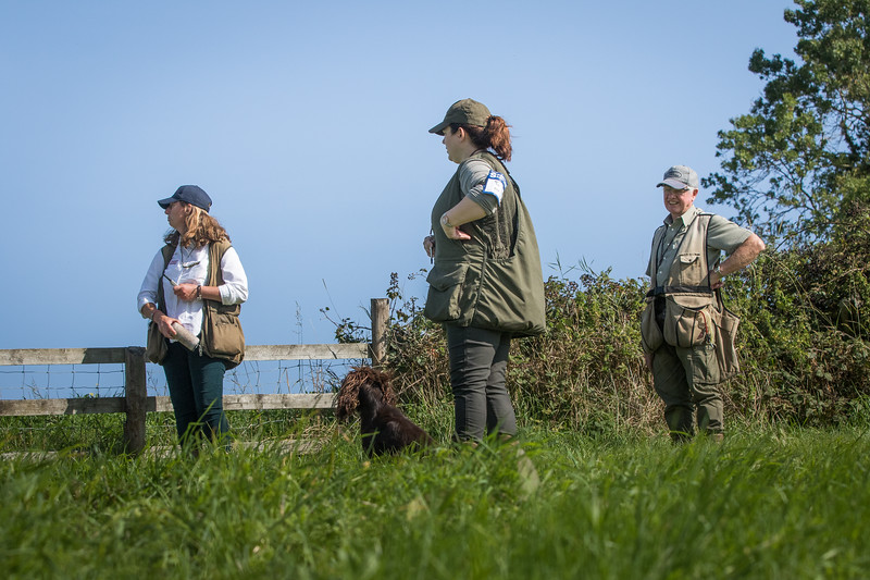 N&BTA Advanced Spaniel Day-118