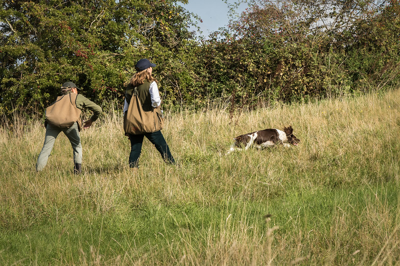 N&BTA Advanced Spaniel Day-77