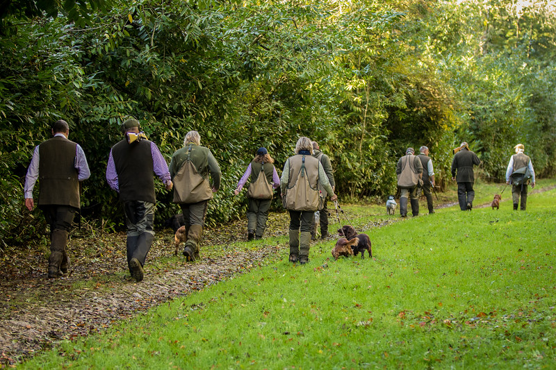Northwick Estate Spaniel Live Shoot Over Day-147