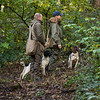 Northwick Estate Spaniel Live Shoot Over Day-11