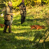 Northwick Estate Spaniel Live Shoot Over Day-52