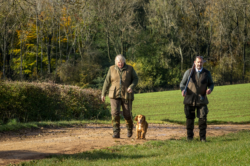 Northwick Estate Spaniel Live Shoot Over Day-135