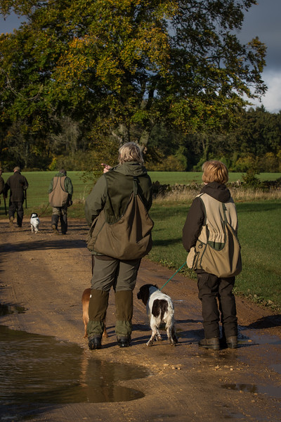 Northwick Estate Spaniel Live Shoot Over Day-1
