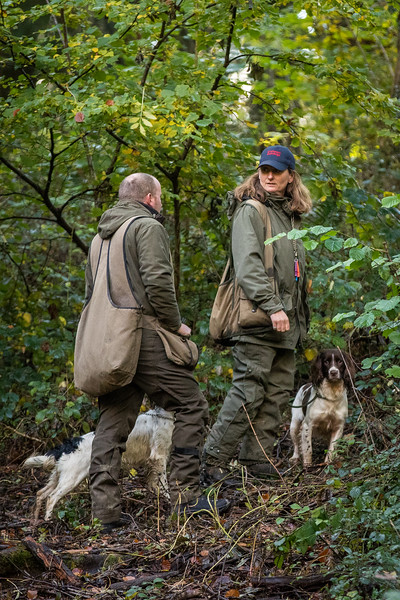 Northwick Estate Spaniel Live Shoot Over Day-13