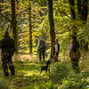 Northwick Estate Spaniel Live Shoot Over Day-159