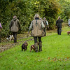 Northwick Estate Spaniel Live Shoot Over Day-146