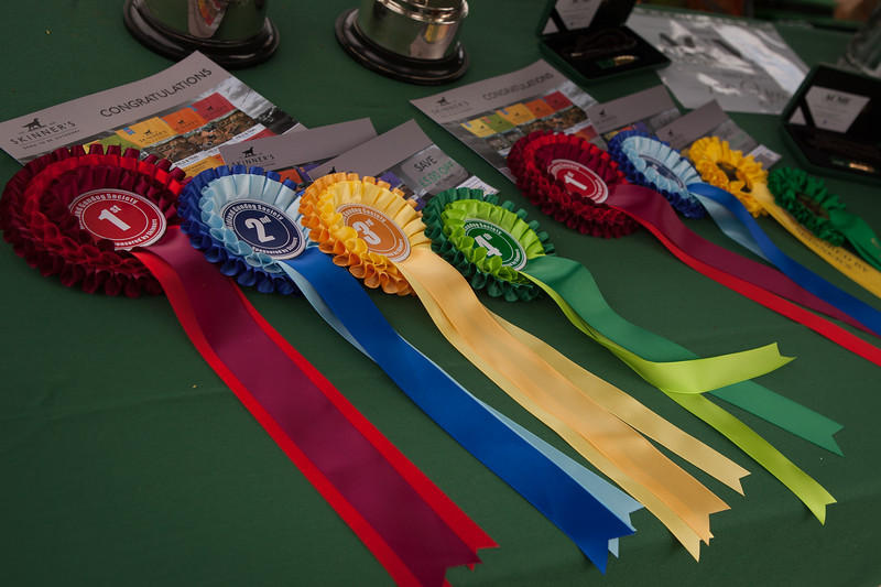 MGDS Novice & Open Working Tests 31.07.21