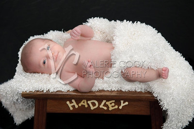 Hadley-025