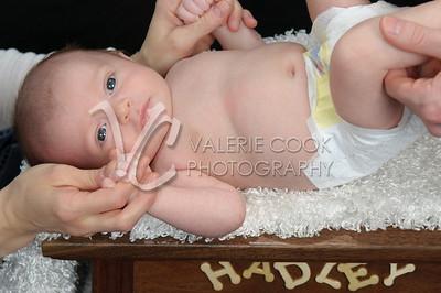 Hadley-029
