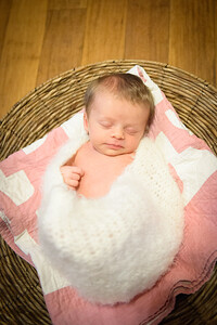 Sheraden newborn023