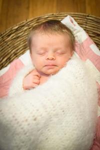 Sheraden newborn024