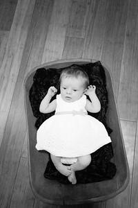 Sheraden newborn031-3