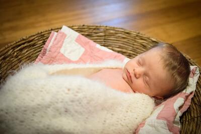 Sheraden newborn020