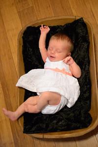 Sheraden newborn029