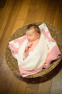 Sheraden newborn028