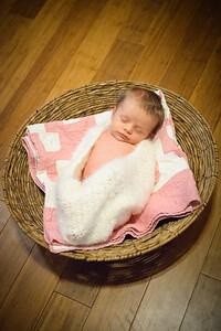 Sheraden newborn019
