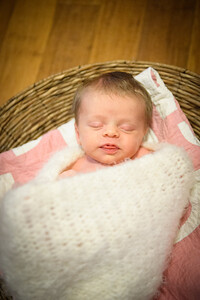 Sheraden newborn026
