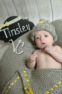 Tinsley022