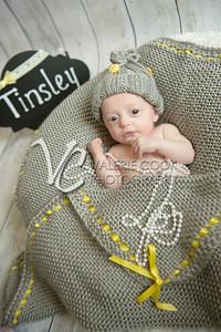 Tinsley024