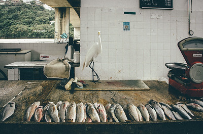 Fish Market (Rio De Janeiro BRAZIL)