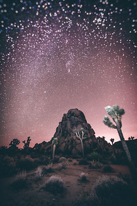 The Purple Starry night (Joshua Tree CA)