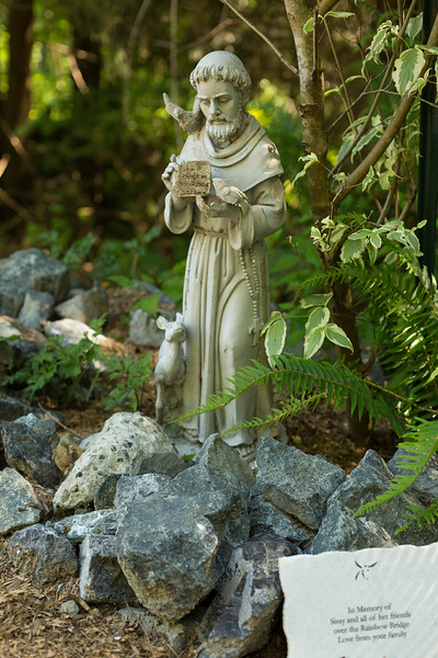 St. Francis of Assisi, patron saint of animals