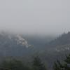 Foggy Morning - Ano Nuevo 1